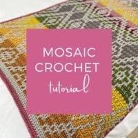 2 row mosaic crochet technique tutorial by HanJan Crochet
